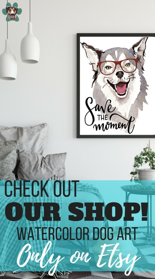 Come take a peek at our watercolor dog art. We are on a mission to help others chase a happier life alongside their four-legged. We want to bring more light, color, and encouragement to the world while putting an end to the stigma around Depression and Anxiety.