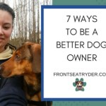7 Ways to Be a Better Dog Owner