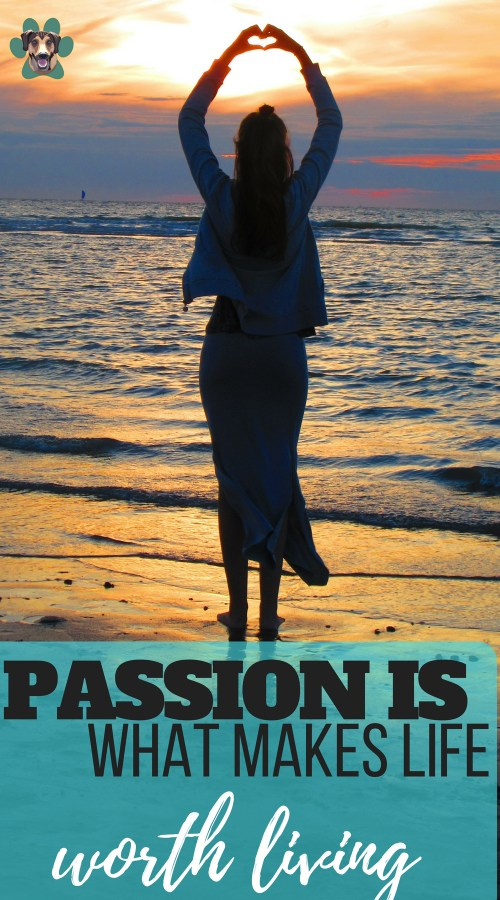 """The world needs you and your calling. The world also needs to see more people living the dream, just like Christine Savella. If more and more people choose to take the route less traveled and pick up their unique God-given talents, we can make passion our new """"normal"""". Find your passion in life and run with it!"""