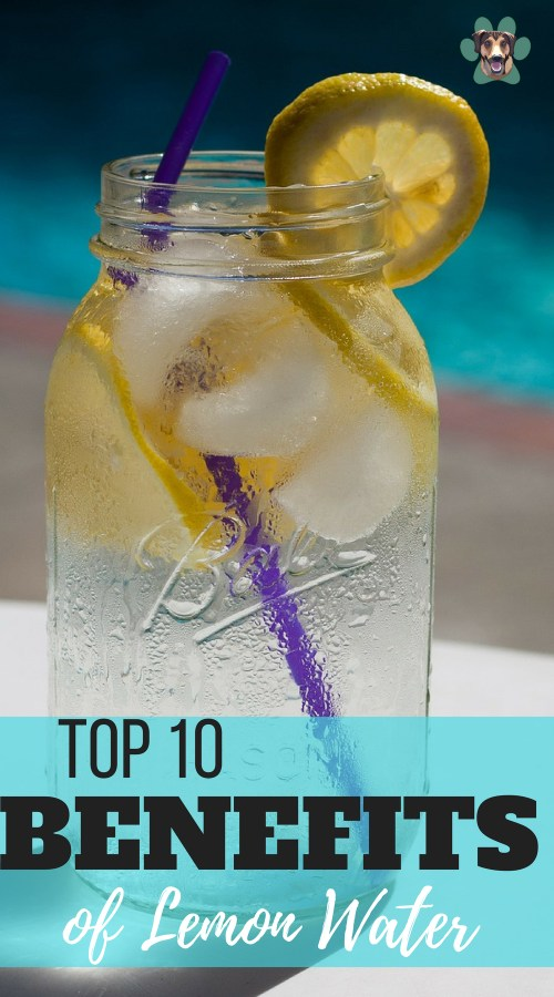 Everyone knows lemon water is great for the body. It is on many healthy eating lists. But do we know why it is so good? Here's 10 benefits of lemon water.