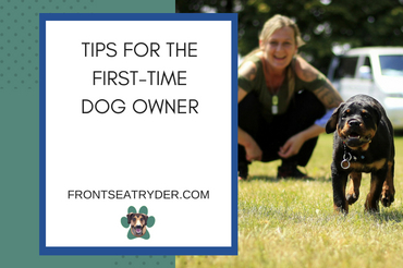 Tips for the First-Time Dog Owner