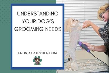 Understanding Your Dog's Grooming Needs
