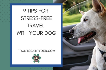 9 Ways to Make Travelng With Your Dog Stress-Free