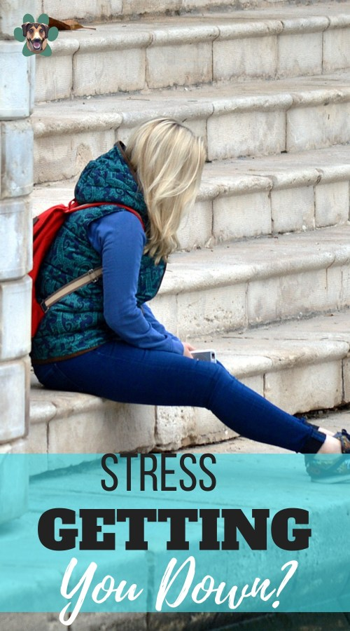 Today's lifestyle is not doing any favors for our mental and physical health. We have little or no control over how much we have to do each day, but we can change how we deal with the overwhelming tasks. Here are a few tips on how to get rid of stress, or at least control stress.