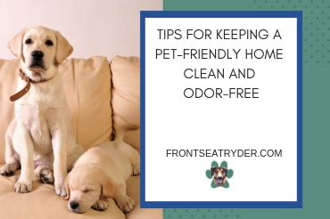 Tips for Keeping a Pet-Friendly Home Clean and Odor-Free