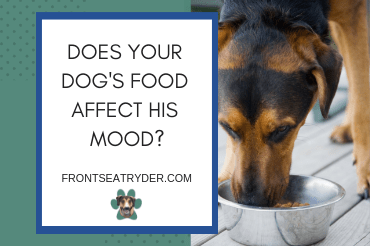 Does Your Dog's Food Affect His Mood?