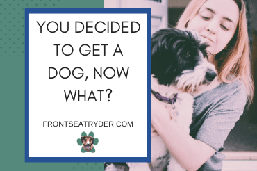 YOU DECIDED TO GET A DOG, NOW WHAT?