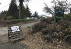 "This March 2, 2017, photo shows a sign saying ""Now Hiring"" in front of Brooks Tree Farm near Salem, Ore. Farmers, nursery and winery owners and others who depend on immigrant labor are predicting a catastrophe as federal immigration agents focus on stepping up arrests of people who are in America illegally. (AP Photo/Andrew Selsky)"