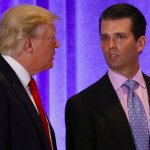 As Russia Scandal Touches His Son, Trump Privately Rages
