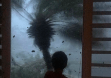 "In this early morning Sept. 20, 2017 photo, a young boy looks out the window as strong winds brought on by Hurricane Maria bend a palm tree and send debris flying, in Juncos, Puerto Rico. As rains began to lash Puerto Rico, Gov. Ricardo Rossello warned that Maria could hit ""with a force and violence that we haven't seen for several generations."" (AP Photo/Linda Rodriguez Flecha)"