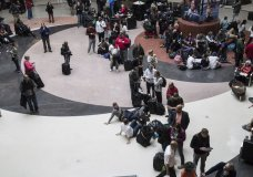 A sudden power outage at the Hartsfield-Jackson Atlanta International Airport leaves flights grounded and thousands of travelers stranded. (Dec. 17)