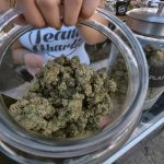 LA Will Become Largest U.S. City With Recreational Pot