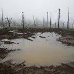 Rain Unleashes Risk Of Mudslides In Fire-Ravaged California