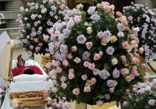 Aretha Franklin lies in her casket at Charles H. Wright Museum of African American History during a public visitation in Detroit, Tuesday, Aug. 28, 2018. Franklin died Aug. 16, 2018, of pancreatic cancer at the age of 76. (AP Photo/Paul Sancya, Pool)