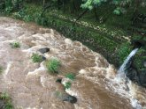 Water rushes through a spillway in a neighborhood below the Nuuanu Dam in Honolulu on Thursday, Sept. 13, 2018. Honolulu officials say they may need to evacuate 10,000 people from a residential neighborhood if water in the reservoir continues to rise after heavy rains from a tropical storm. (AP Photo/Caleb Jones)