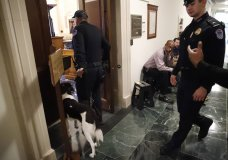 U.S. Capitol Police prepare to check the hearing room where top U.S. diplomat in Ukraine William Taylor, and career Foreign Service officer George Kent, will testify before the House Intelligence Committee on Capitol Hill in Washington, Wednesday, Nov. 13, 2019, during the first public impeachment hearings of President Donald Trump's efforts to tie U.S. aid for Ukraine to investigations of his political opponents. (AP Photo/Alex Brandon)