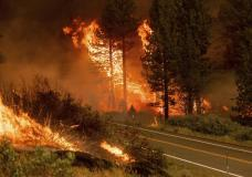 The Tamarack Fire burns in the Markleeville community of Alpine County, Calif., on Saturday, July 17, 2021. (AP Photo/Noah Berger)