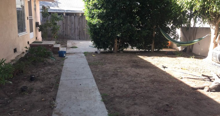 Dirty Yard…Soon-To-Be Urban Oasis