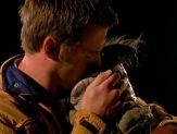 Crichton kisses Rygel