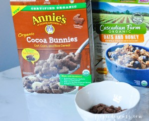 Organic Kids Food Brands and Better For You Brands to Shop For