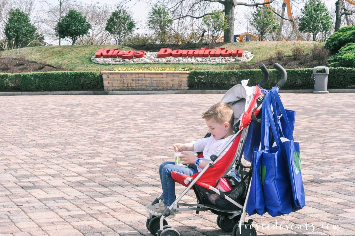 Kings Dominion Fun for the Whole Family- Best Theme Parks via Misty Nelson mom blogger family travel