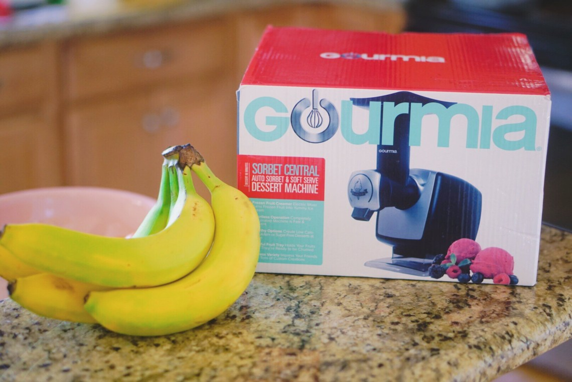 Kitchen Essentials - Gourmia Sorbet and Smoothie Maker - You Can Shop For no eBay - ebay home goods via Misty Nelson, lifestyle blogger ad parenting influencer mom at frostedblog @frostedevents