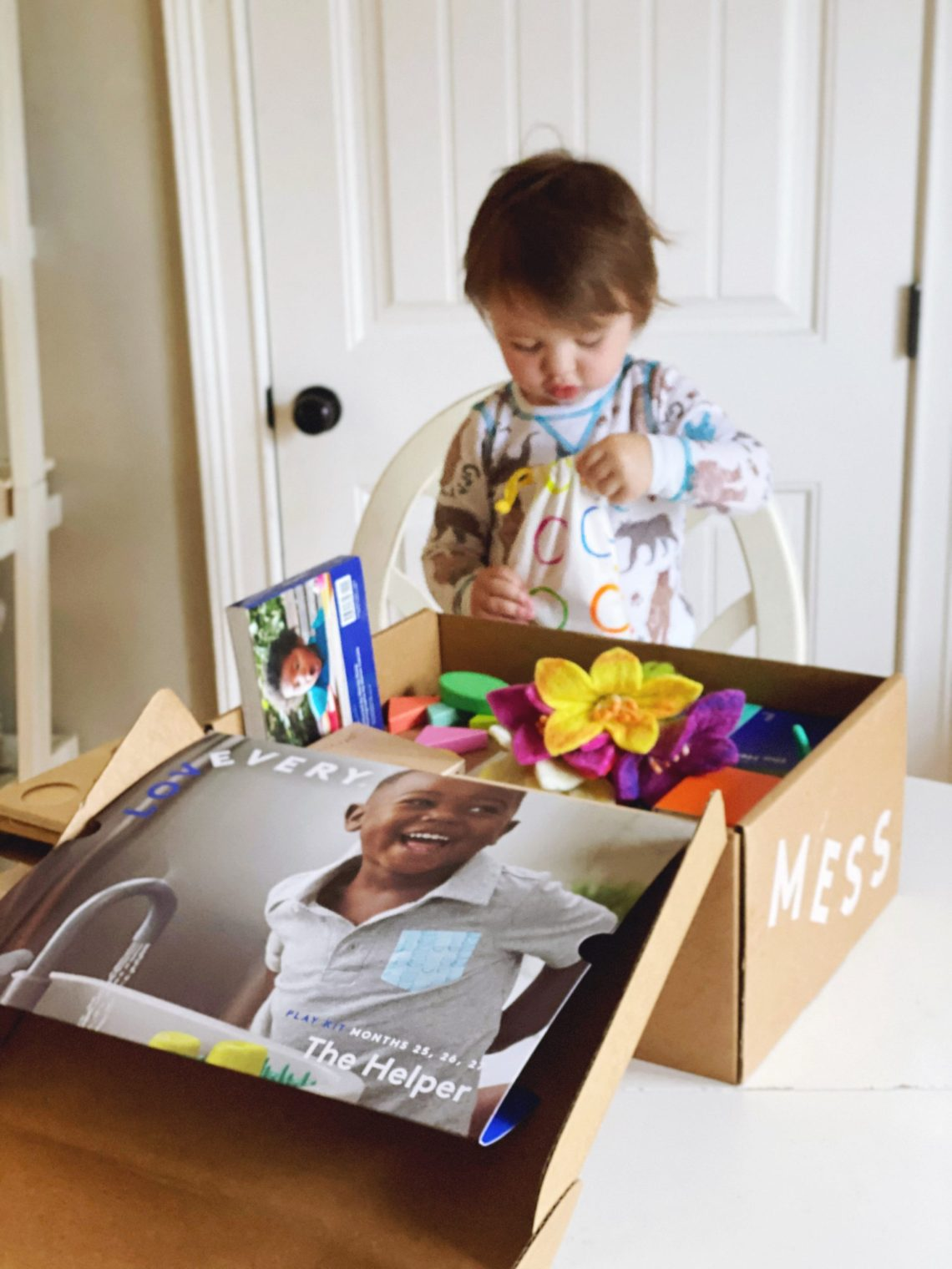 Lovevery Subscription Box for Baby Development and Toddler Toys