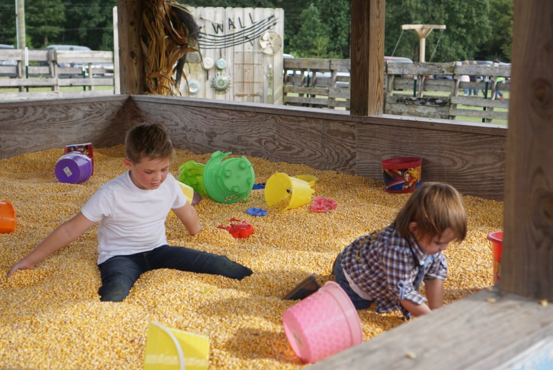Corn Mazes in NC - Pumpkin Patches and Fall Things to Do - North Carolina - Alpha and Omega - corn bin