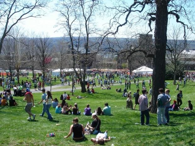Cornell Summer Program Banner