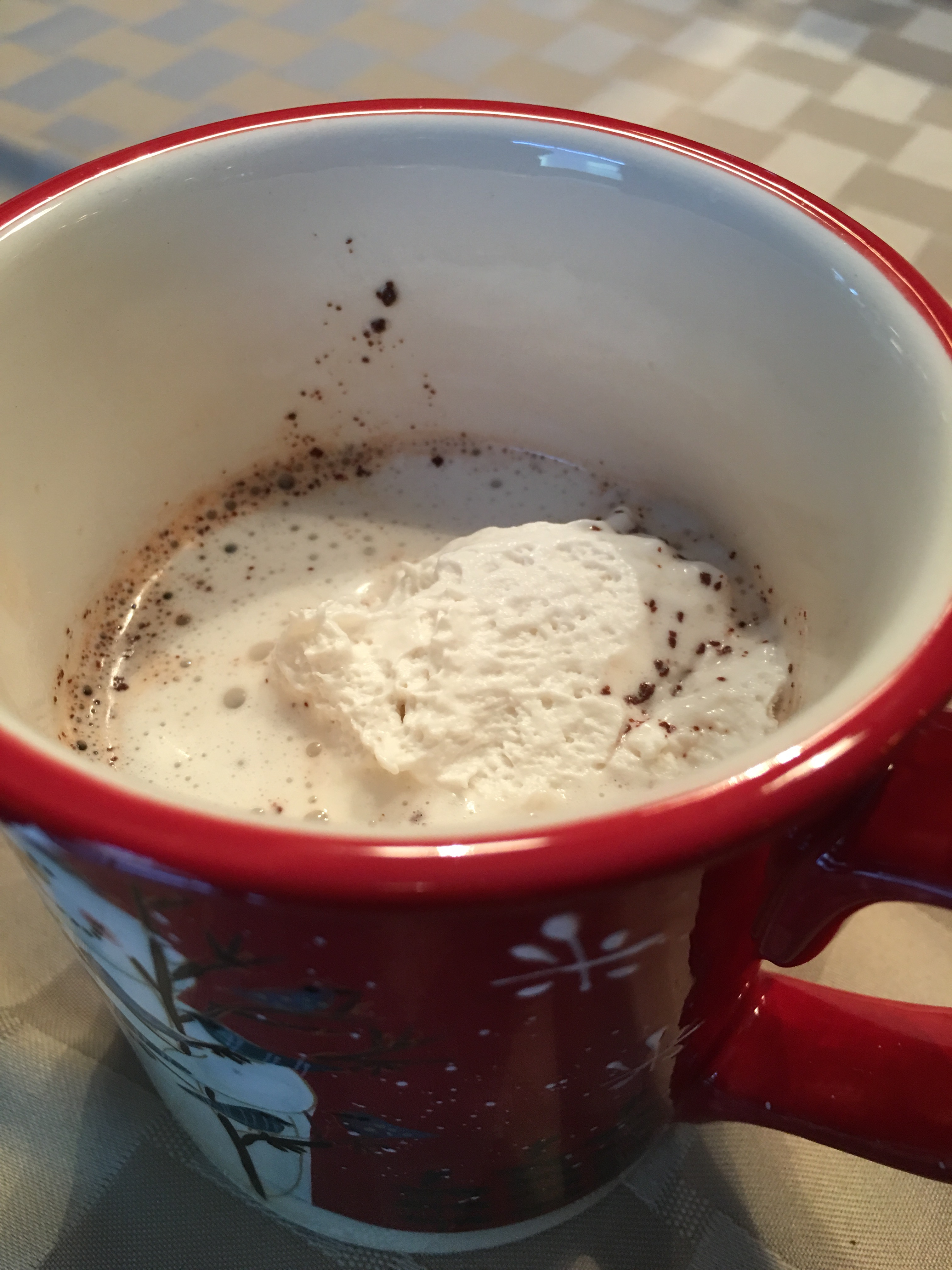 Hot Cocoa for fructose malabsorbers