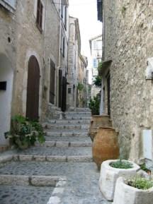 steps and pot plants