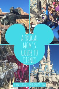 A Frugal Mom's Guide To Disney - 10 Ways To Save At Disney