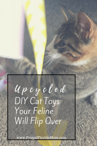 Upcycled DIY Cat Toys Your Feline Will Flip Over