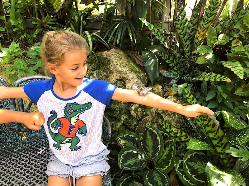 Butterfly Rainforest - 2-day itinerary for families in Gainesville, FL #gainesville #florida #tourofflorida #alachuacounty #gainesvilleFL #universityofflorida #UF #gogators #Gainesvillewithkids #gainesvilleitinerary
