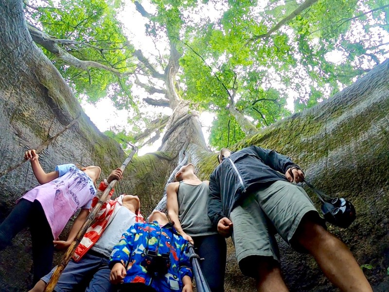 What to do near Volcano Arenal with kids | Costa Rica with kids | La Fortuna | Kid activities in Costa Rica | Kids activities in La Fortuna, Costa Rica | Family travel | Traveling with kids | #travelfamily #familytravel #costarica #costaricatips #costaricawithkids #centralamerica #lafortuna #volcanoarenal #frugalforluxury