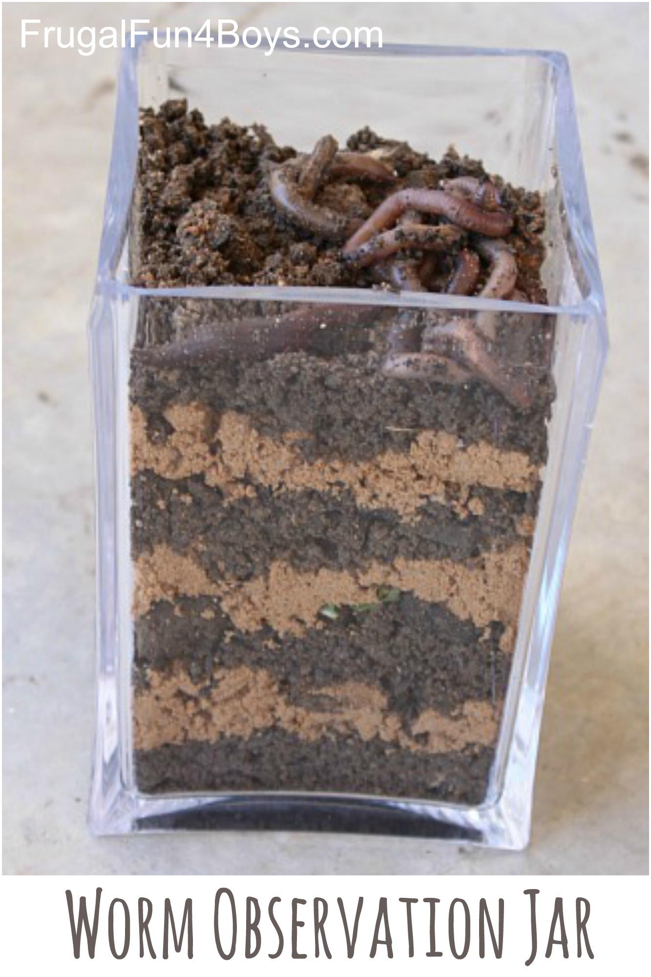 Make A Worm Observation Jar