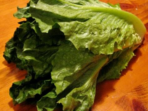 Fresh Romaine $1.49 a head or $1.03 per pound