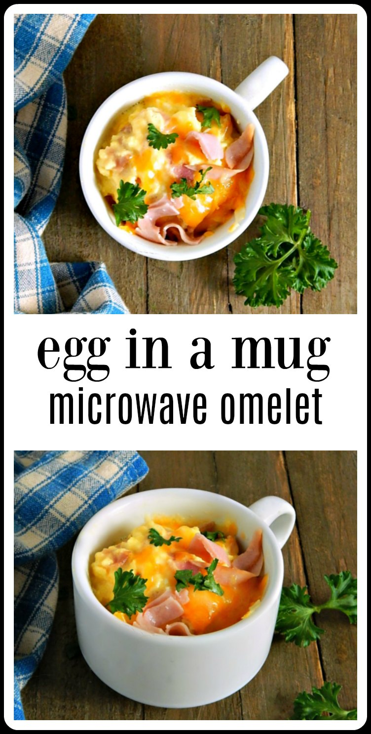 pin egg in a mug microwave omelet