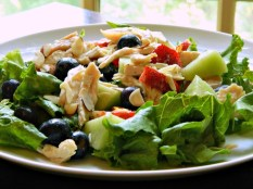 Chicken & Fruit Salad http://frugalhausfrau.com/2015/05/29/chicken-fruit-salad-with-raspberry-dressing/