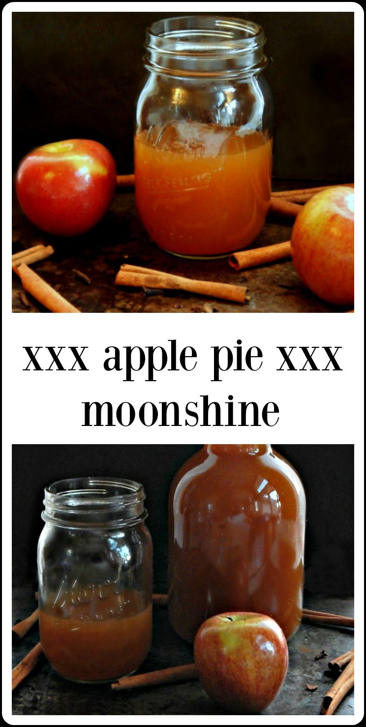 This easy Apple Pie Moonshine tastes divine, especially in a Mason Jar! It's carefully formulated with just the right amount of hooch. Gets better with time! #ApplePieMoonshine