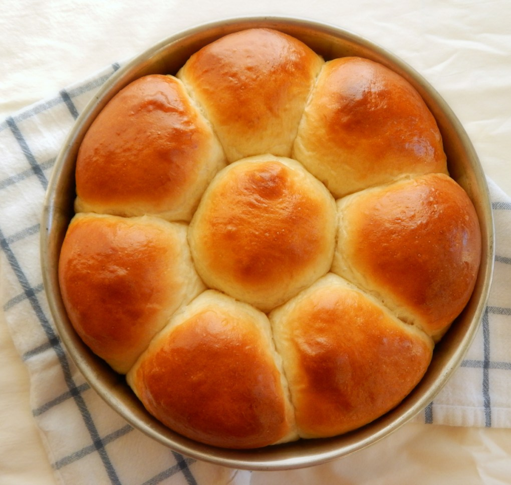 Japanese Milk Bread Dinner Rolls