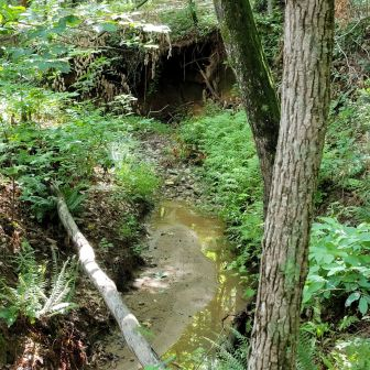 Creek with Cave