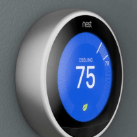 Nest ...Was $249..Now $129 - $100 Rebate