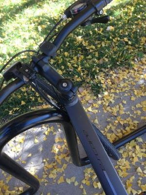 Bike in Autumn Leaves