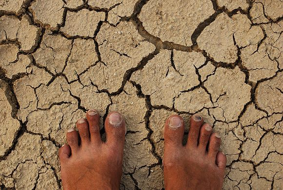 Cracked Earth Climate Change