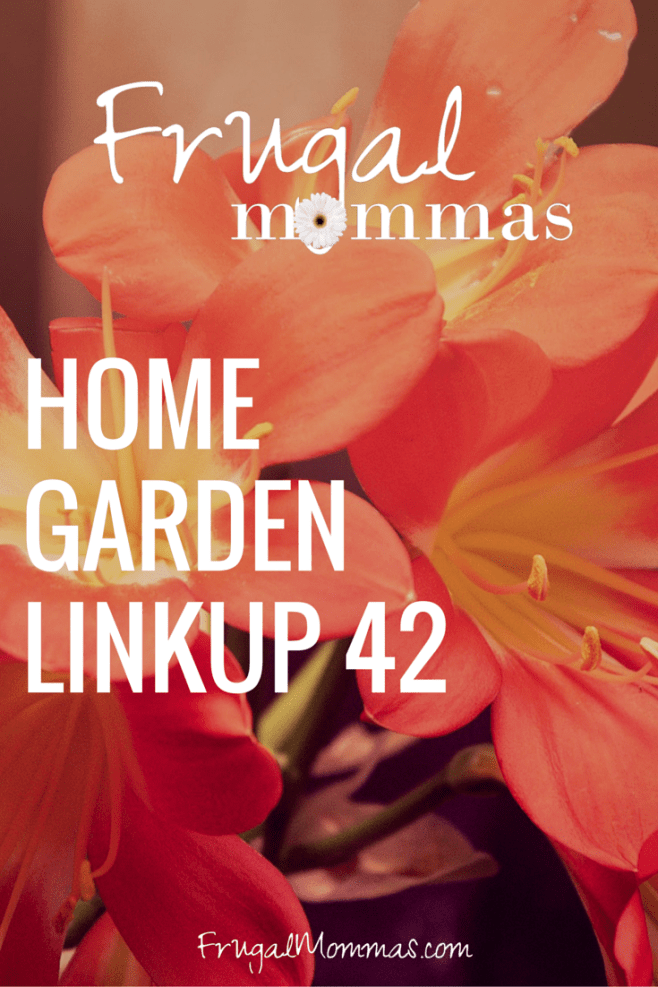 friday home garden linkup 42