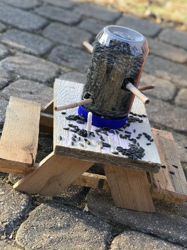 picnic table with bird feeder