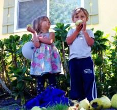 pear-kids