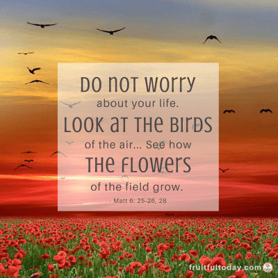 "Verse about trusting God: ""Do not worry about your life. Look at the birds of the air... See how the flowers of the field grow."" Matthew 6:25-26, 28"