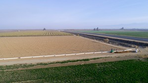 Pipe Install in Crop Growing Field Farm Landscape With Dirt Road Nearby